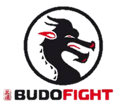Budofight 1